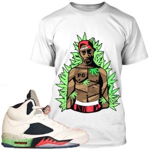 poison 5s sneaker shirt