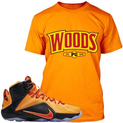 Lebron 12 Cleveland Cavs Shirts